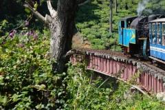 Train Journey (5)